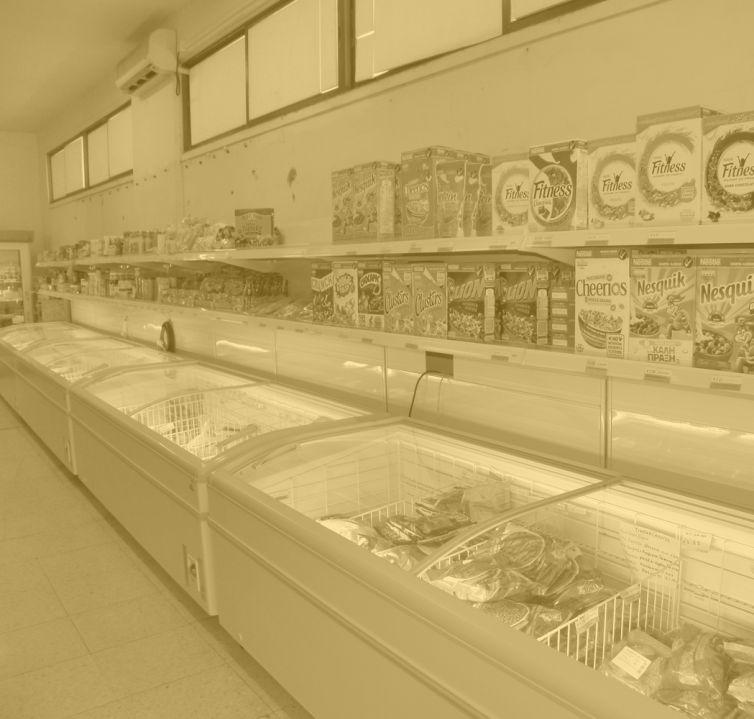 Frozen Store